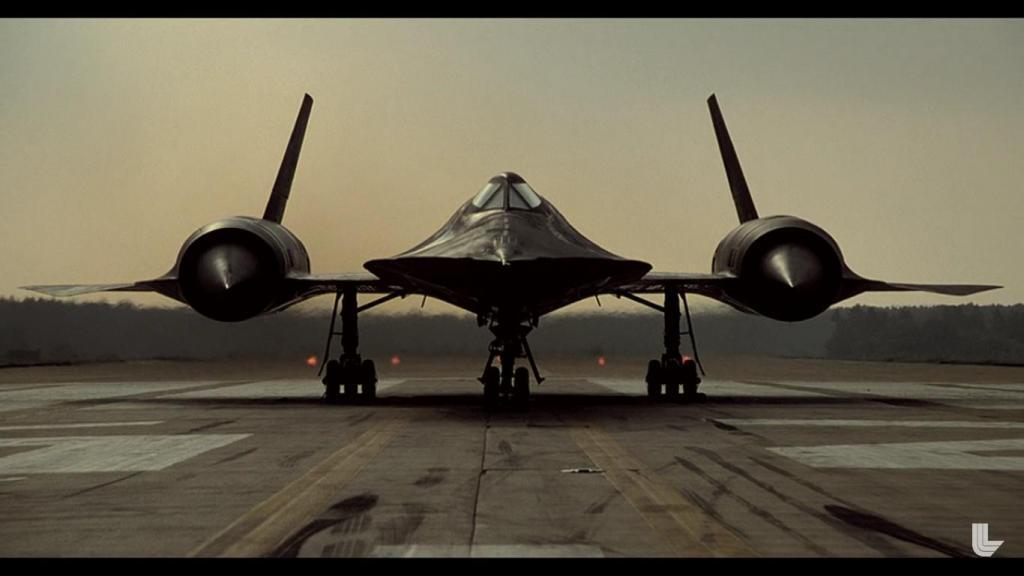 Blackbird.jpg