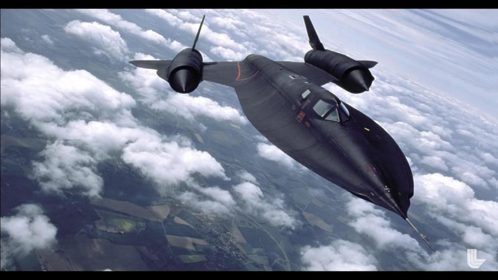 Blackbird5.jpg