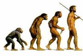 evolution-72dpi.jpg